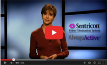 Video about Termite Damage on Sentricon® Youtube Channel