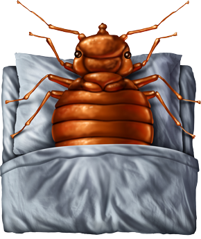 Image of cartoon bed bug in a bed laying down like a human.